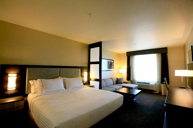 Holiday Inn Express and Suites Anaheim Foto 46