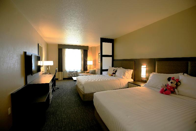Holiday Inn Express and Suites Anaheim Foto 49
