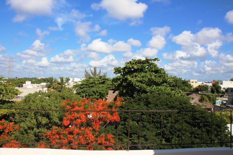 Terrace Habanero Sun