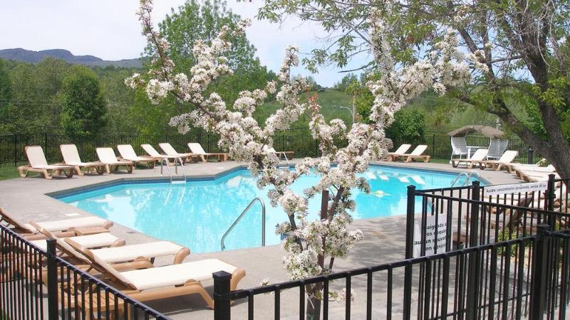Pool Estrimont Suites Spa
