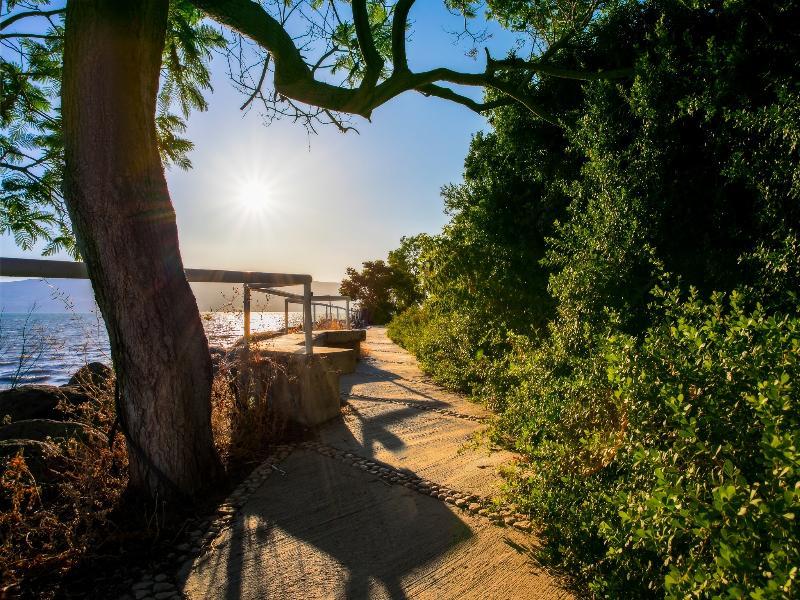 Beach Kfar Kinneret