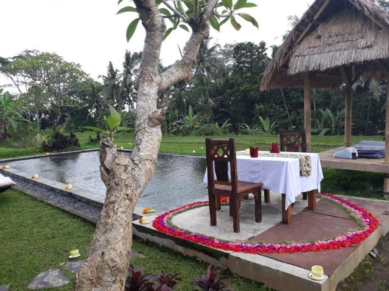 Pool Kishi-kishi Ubud Villas