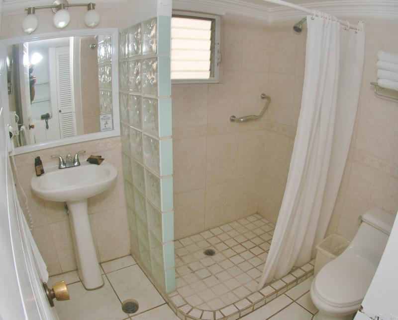 Room Villas Del Palmar Manzanillo