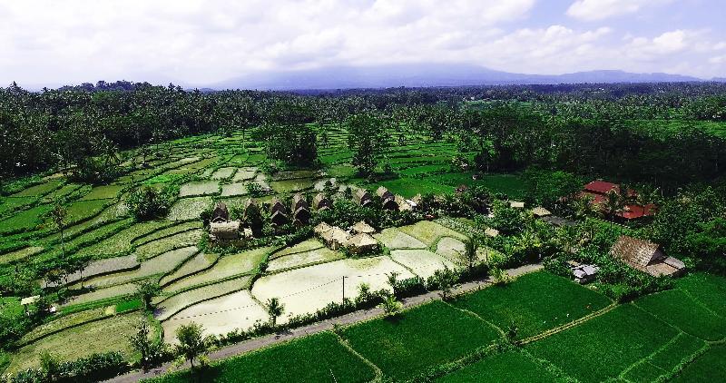 General view De Klumpu Bali