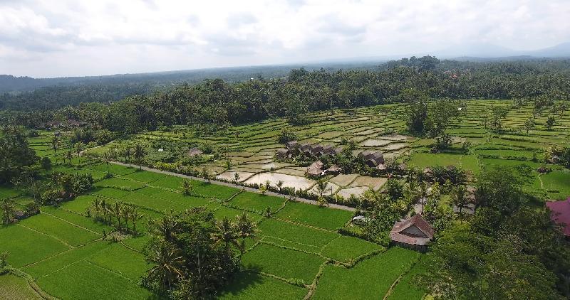Lobby De Klumpu Bali