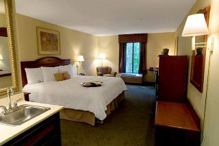 Book Hampton Inn Atlanta - image 6