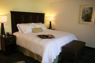 Book Hampton Inn and Suites Wilder Cincinnati - image 7