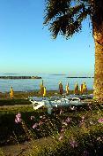Beach Palm Beach Hotel & Bungalows