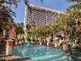 Pool Flamingo Las Vegas