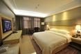Room Friendship Palace