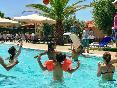 Pool Village Mare