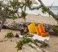 Beach Jungle Beach