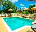 Pool Halcyon Palm