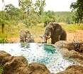 Pool Motswari Private Game Reserve - Timbavati