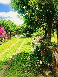 General view Relais Correale Rooms&garden