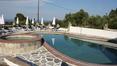Pool Pashos Hotel