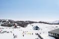 Sports and Entertainment Sheraton Hokkaido Kiroro Resort
