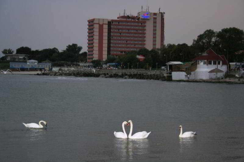 Paradiso, Mangalia