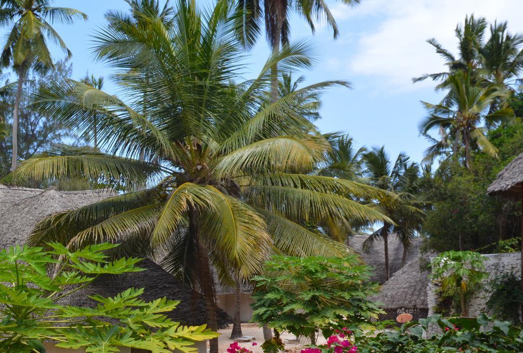 Ora Resort Coral Reef, Kaskazini 'A'