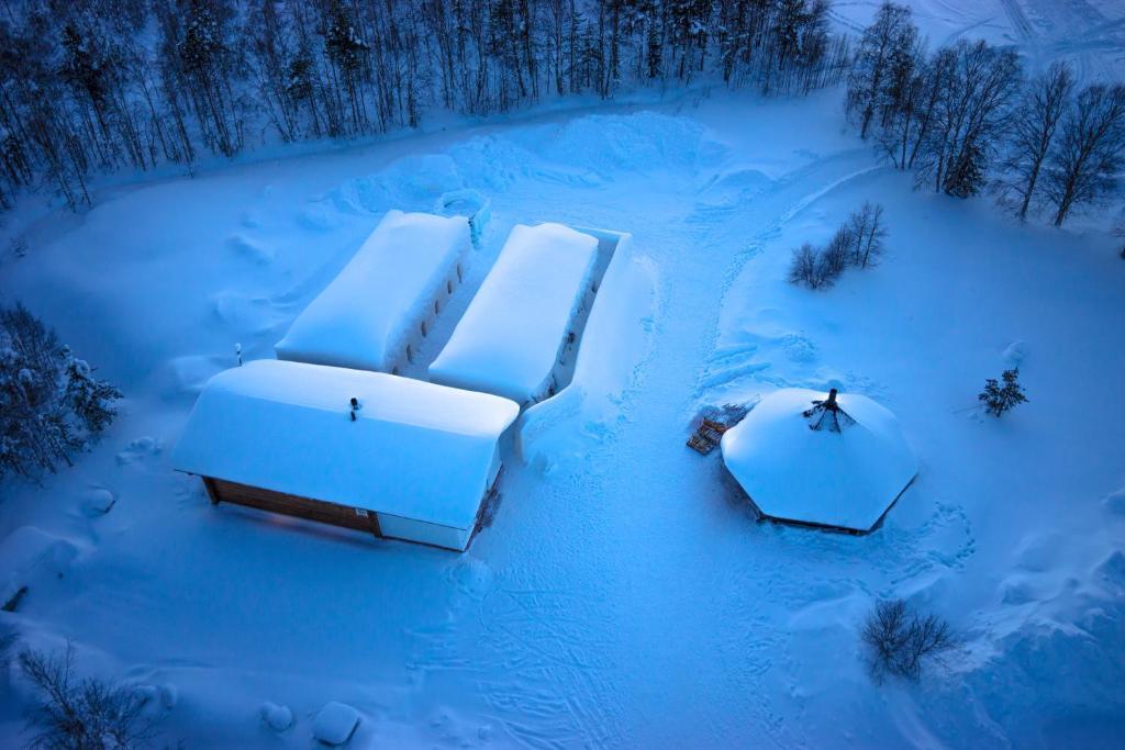 Arctic Snow, Lapland