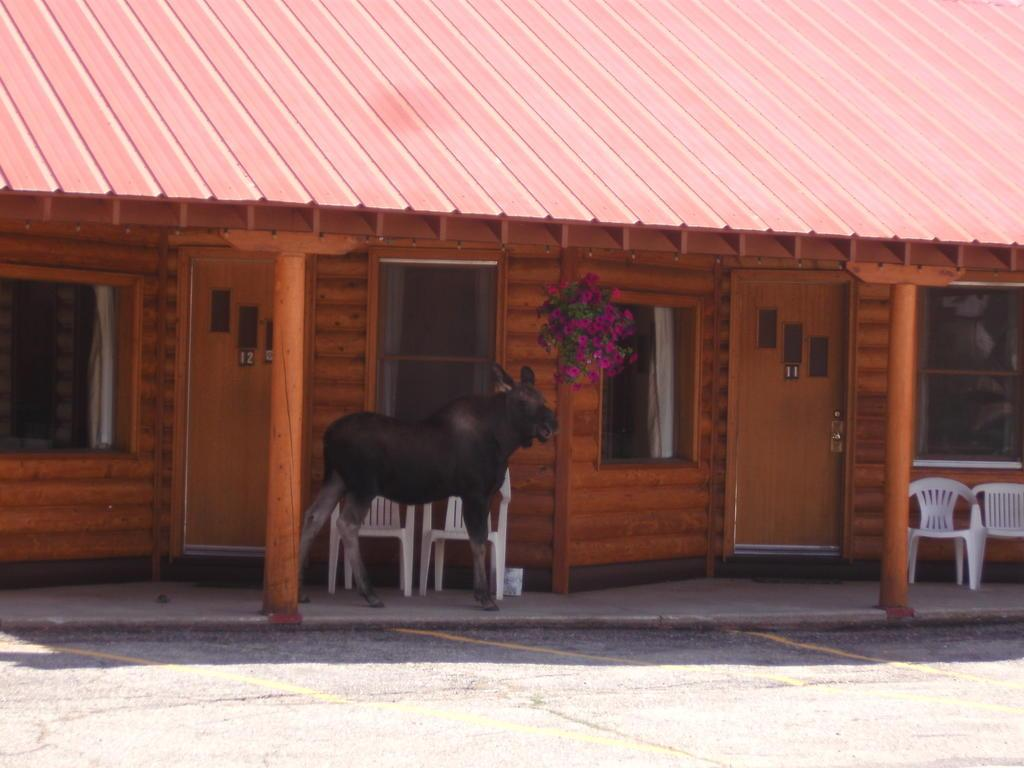 Lone Eagle Lodge And Snowmobile Rental, Grand