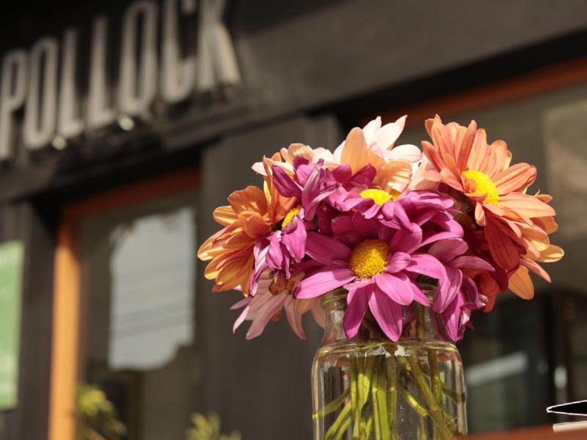 Pollock Hotel, Distrito Federal