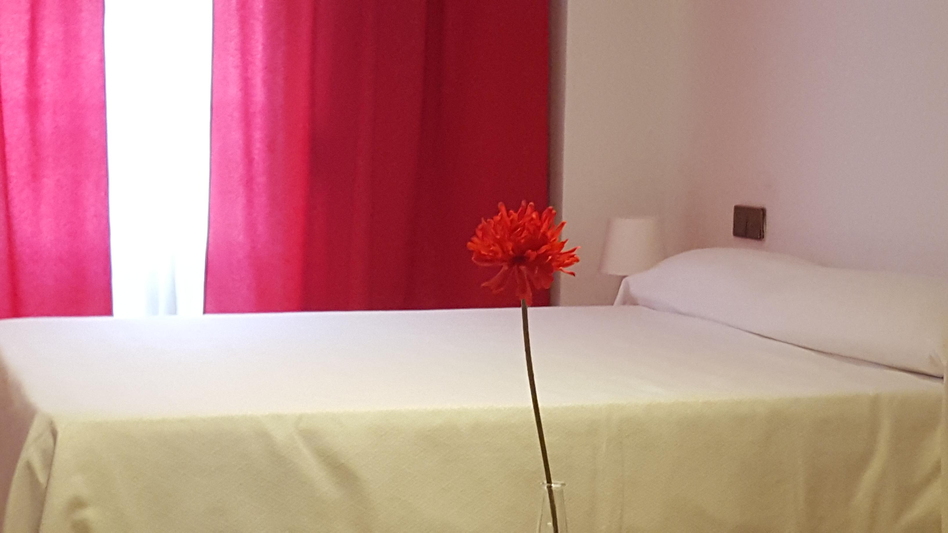 Hotel Apartamentos Doña Lola