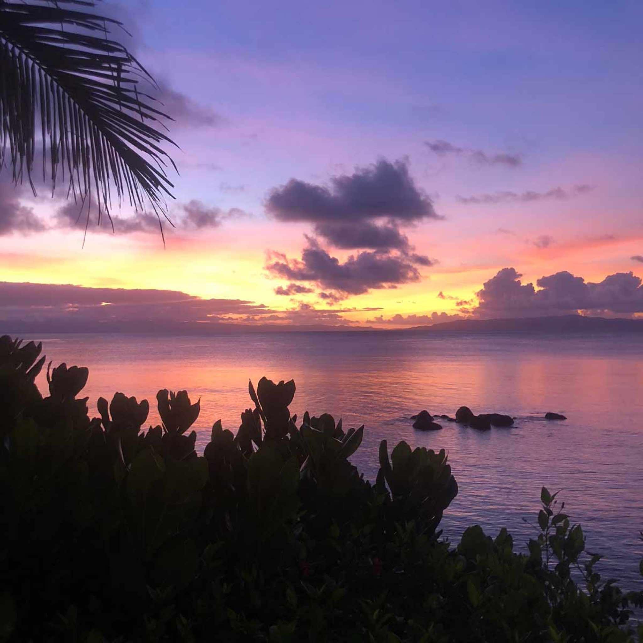Taveuni Palms, Cakaudrove