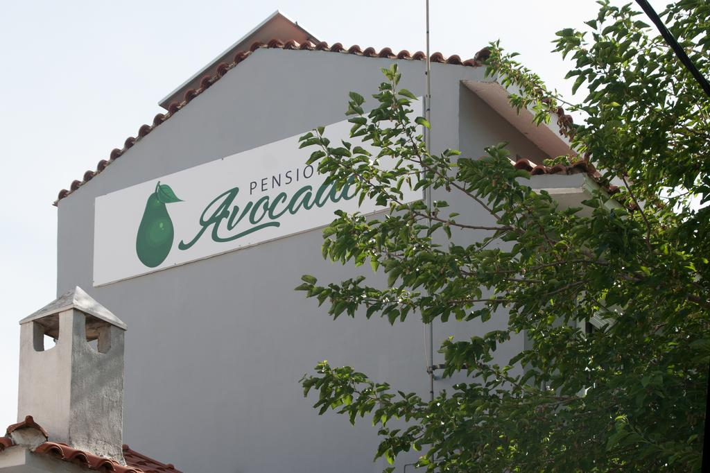 Pension Avocado