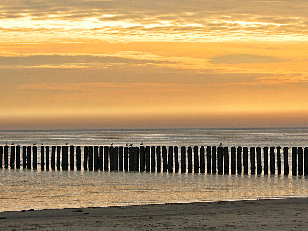 Beach club Zuiderduin, Veere