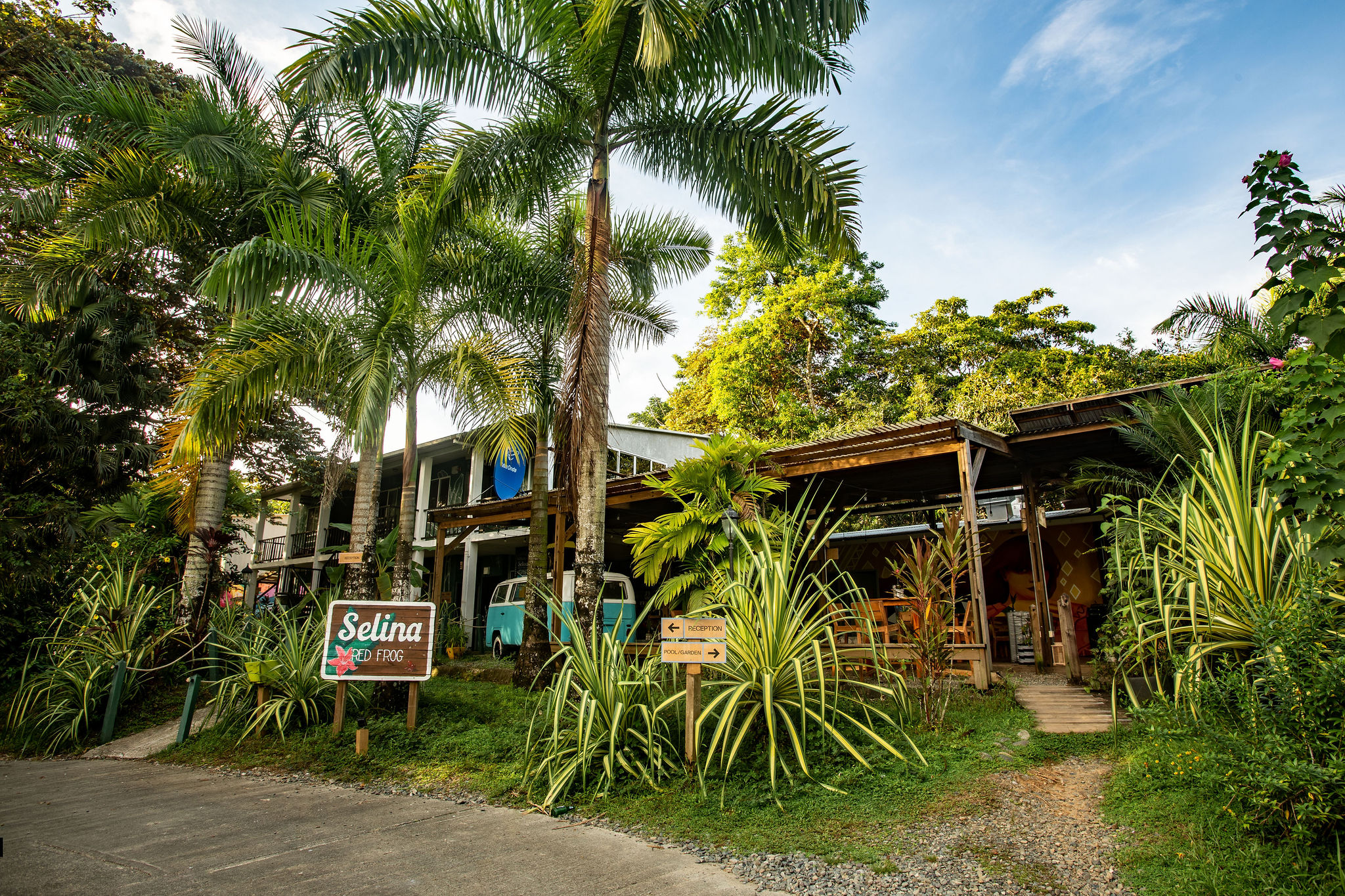 Selina Red Frog, Bocas del Toro